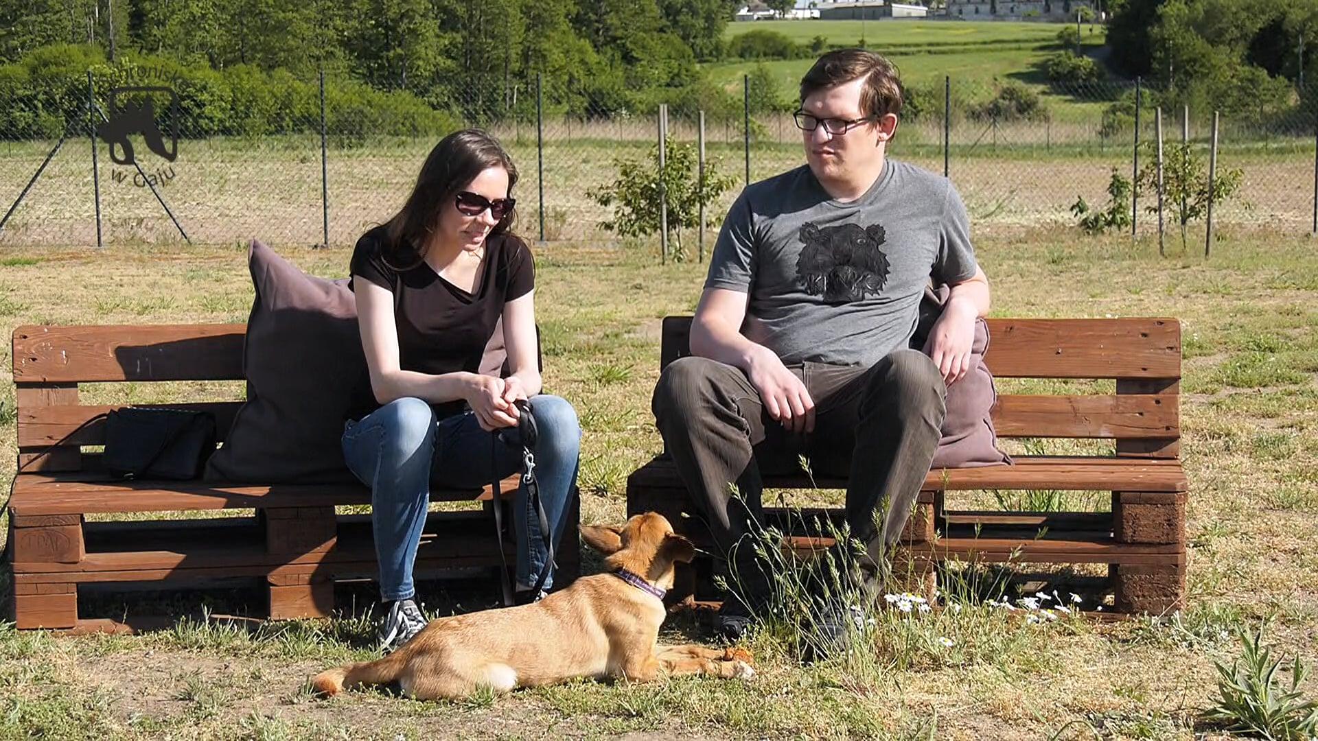 Kwadrans dla psa i kota – odc. 15