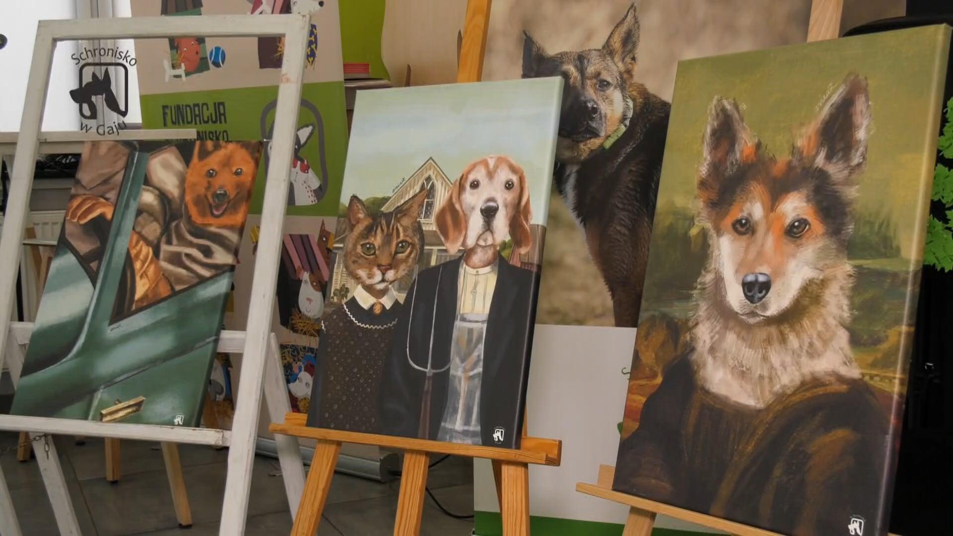 Kwadrans dla psa i kota – odc. 23